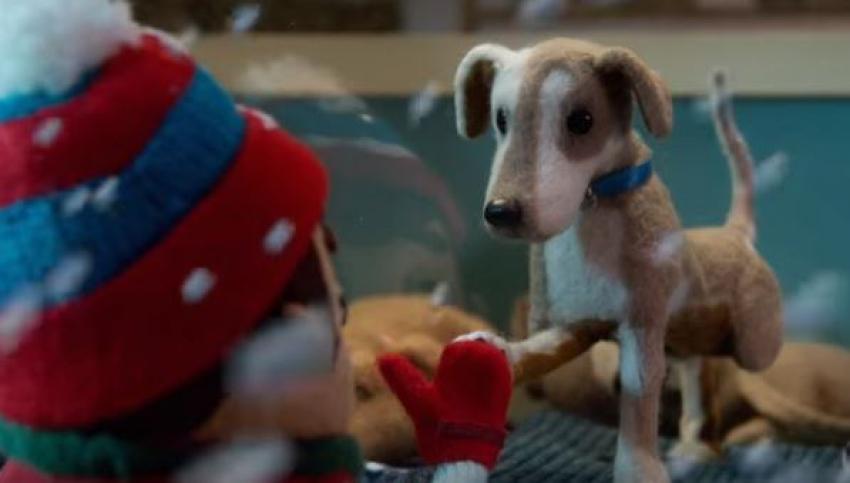 Il nuovo spot Petco: fare la differenza per un animale, si può!