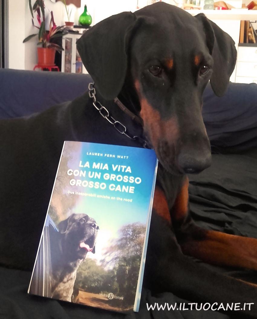 I migliori libri da regalare a chi ama i cani