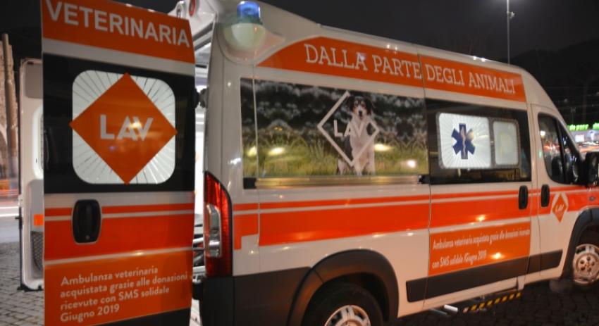 Inaugurata l'ambulanza Veterinaria della Lav