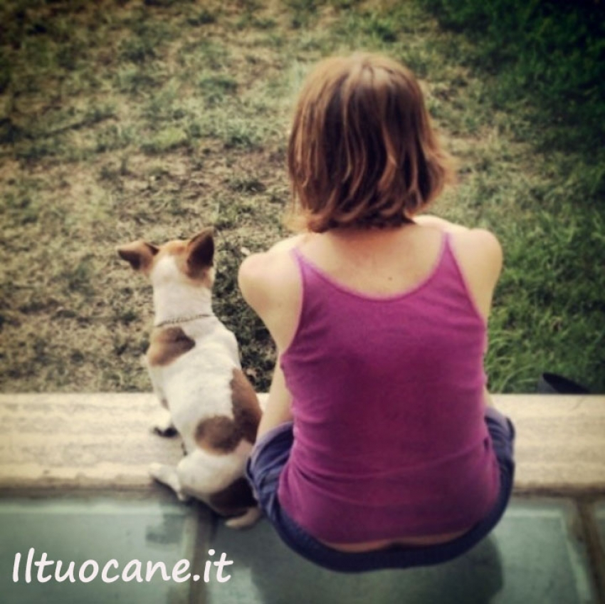 Il cane e l'empatia - Un nuovo studio sullo stress sincronizzato